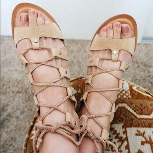 Dolce vita jasmyn suede gladiator sandals. 10M